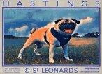 St Leonards dog walkers
