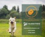 My Best Friend, Burntwood - Staffordshire