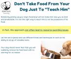 SpiritDog Training | Food guarding