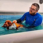 Hydrotherapy with a Cockapoo