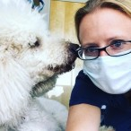 Independence Pet Hospital