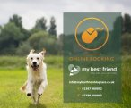 My Best Friend Dog Care Chester