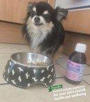 PetproBio | Podium Pet Products