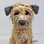 Foscott's Friends by Ali Clarke - Pet Portraits made from Polymer Clay