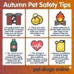 Pet Drugs Online: Bristol