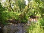 Nearby River Tale