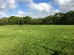 Barnfield Play Paddock For Hire- Ashwater, Devon