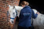 Equine Physiotherapist Yorkshire