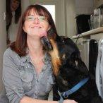 Kings Pet Services - Canterbury, Kent