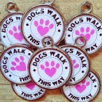 PAWESOME PET TAGS - Pet tags with self-healing superpowers!