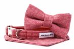 Moo Moo & Bear - Bespoke Collars and Accessories