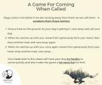 SpiritDog Training | Game - recall