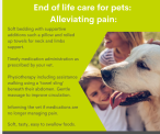Cloud 9 Vets   At-Home Gentle Euthanasia