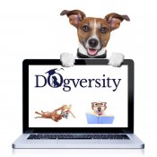 Dogversity | Best Behaviour | Suffolk