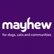 Mayhew Community Vet Clinic - London