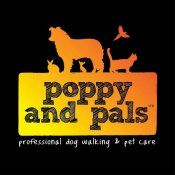 Poppy and Pals - Professional Dog Walking and Pet Care, Maidstone