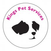 Kings Pet Services | Wedding Day Dog Chaperone Service
