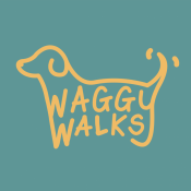 Dog Walking and Pet Services