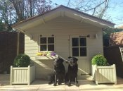 Dog Cottage Company