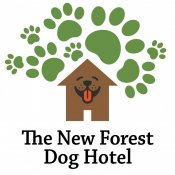 The New Forest Dog Hotel - Home Boarding For Dogs, Hampshire