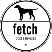 Fetch - Premium Dog Boarding Services - Southend-On-Sea, Essex