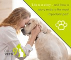 Cloud 9 Vets | At-Home Gentle Euthanasia