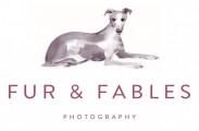Fur & Fables Dog Photography |  Surrey, Sussex, Hampshire