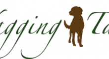Wagging Tails Berkshire - Dog Home Boarding