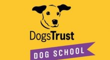 Dog School Leeds - Dogs Trust