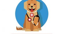 Aardvark Veterinary Clinic - Ellesmere Port, Merseyside