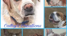 Cathy's Creations - Pet Portraits