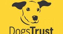 Dogs Trust Basildon, Essex