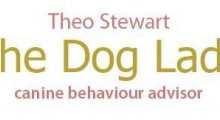 The Dog Lady ... Dog Behaviour Training - Beds, Herts, Cambs and Bucks