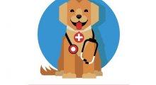 Oakdale Veterinary Clinic - Stanground, Peterborough