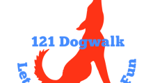 121 Dogwalk, Balsall Commons Premier Dog Walking Service