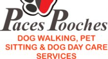 Paces Pooches Dog Boarding and Day Care - Brighton, East Sussex