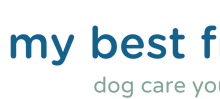 My Best Friend Dog Care - Become a franchisee