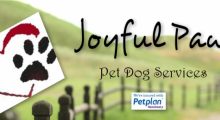 Joyful Paws - Coventry, West Midlands