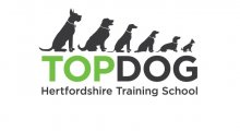 Top Dog Hertfordshire Training School