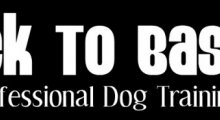 Back To Basics | Dog Training - Hitchin and Stratford upon Avon