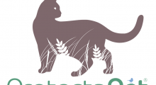 ProtectaPet® Pet Fencing Solutions