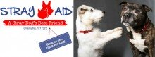 Stray Aid - A Stray Dog's Best Friend