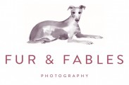 Fur & Fables Dog Photography -  Surrey, Sussex, Hampshire