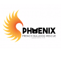Phoenix French Bulldog Rescue