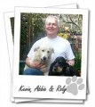 Wagging Tails St Albans - Dog Sitting | Home Boarding