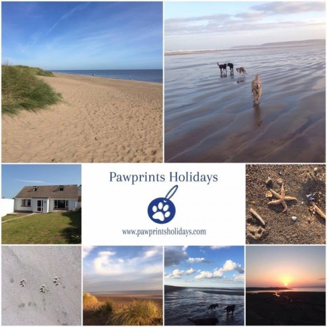 Pawprints Holidays - Appledore, Devon