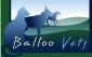 Balloo Vets (Small Animal) - Killinchy, County Down