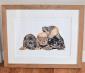 Nicola J Gillyon – Pet Portrait and Wildlife Artist - Beverley,  East Yorkshire