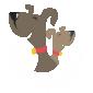 Suffolk Dog Services - Coddenham in Suffolk