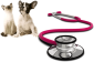Abbey Vet Centre - Caistor, North-East Lincolnshire